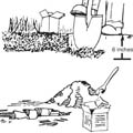 Sketch instructions for taking a soil sample